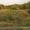 Земельный участок 6 соток с домиком Коп.Калинка. #1155192