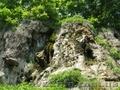 Днестровский каньон и пещеры Поднестровья