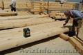 антисептик для древесины)  Lignofix Stabil – надежная защита для новой древесины - Изображение #2, Объявление #1129046