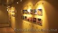 Голландская тросовая система для витрин Box Display It E-clip А4 - Изображение #6, Объявление #1360366