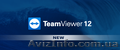 TeamViewer 12 Corporate в аренду.