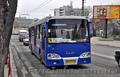 Автобусы СКИФ -5204-01(двигатель Камаз)., Объявление #1590603
